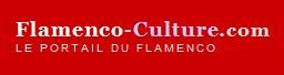 DANSE : Sévillanes et Flamenco à Paris, Danse sevillane